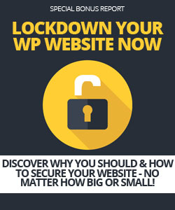 X-DFY05-LockdownWordPress